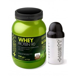 WHEY PROTEIN 90 CACAO